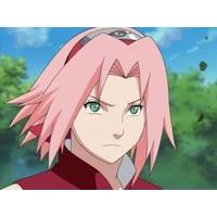 Image of Sakura Haruno