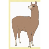 Image of Llama