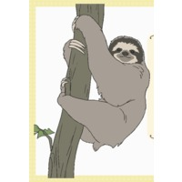 Image of Sloth
