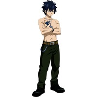 Gray Fullbuster