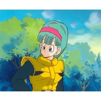 Image of Bulma Brief